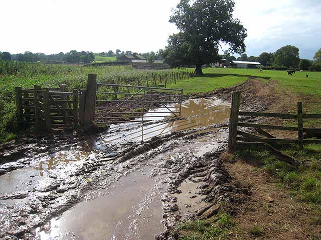 An wide muddy path through fields