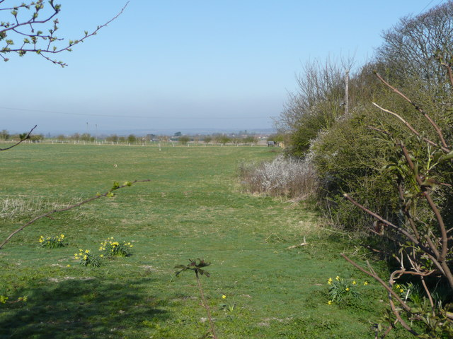 Pastures at the base of the Dunstable Downs - geograph.org.uk - 757910