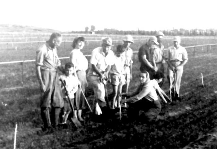 File:PikiWiki Israel 2176 Kibutz Gan-Shmuel sk12- 201 גן-שמואל-נטיעת פרדס 1949-50.jpg