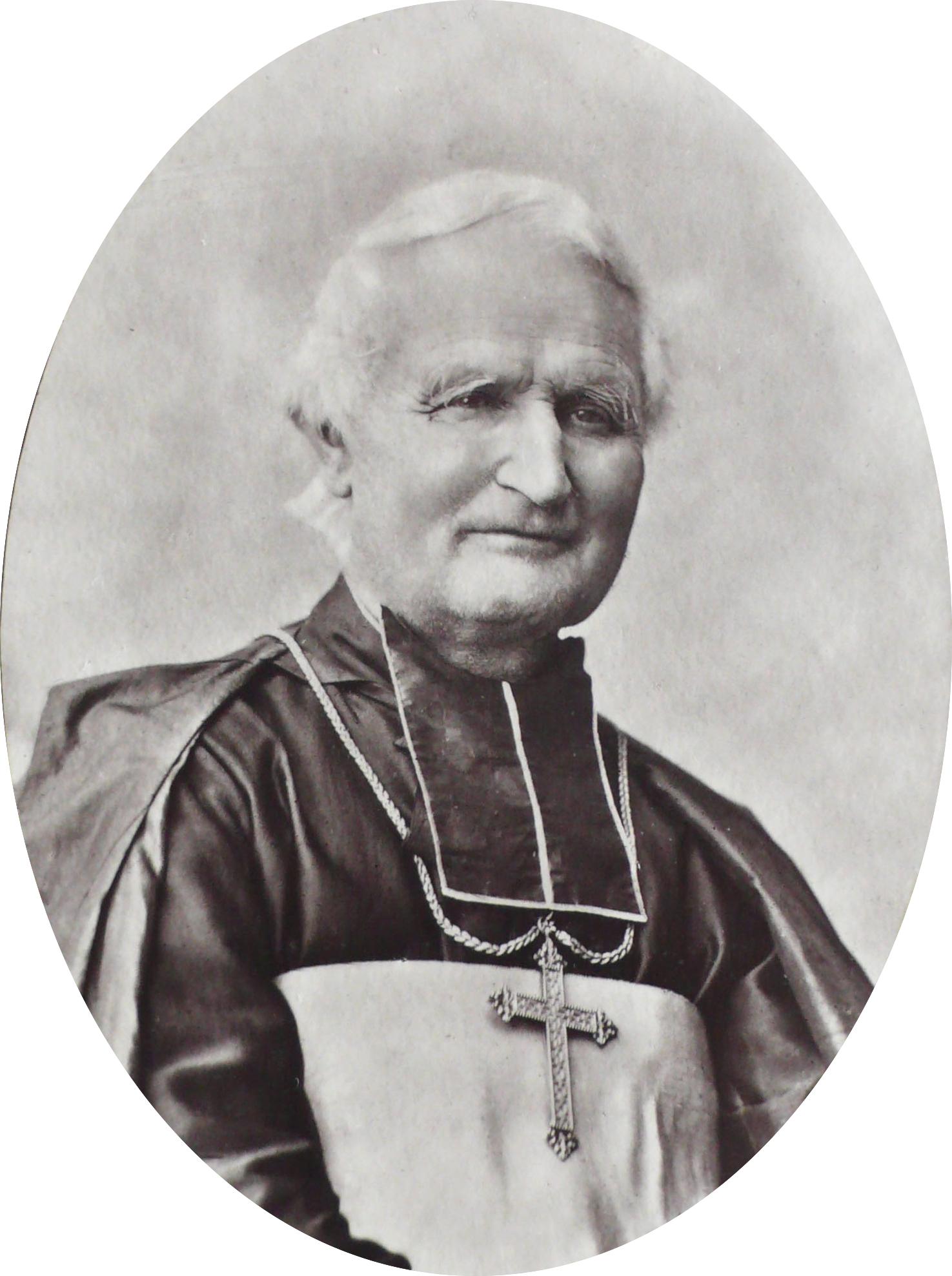 Portrait of Félix Dupanloup, by François-Marie Gobinet de Villecholle, {{circa|1876}}.