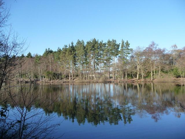 Rapley Lake - geograph.org.uk - 1100592