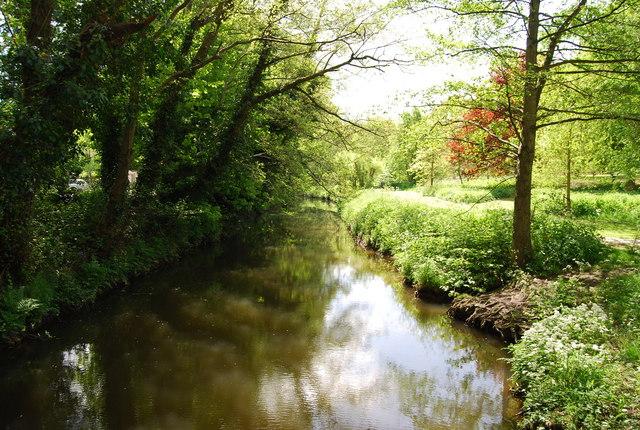River Arun, Horsham - geograph.org.uk - 1291734