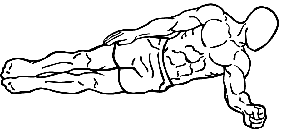 File side plank wikimedia commons for Plank muscles worked diagram
