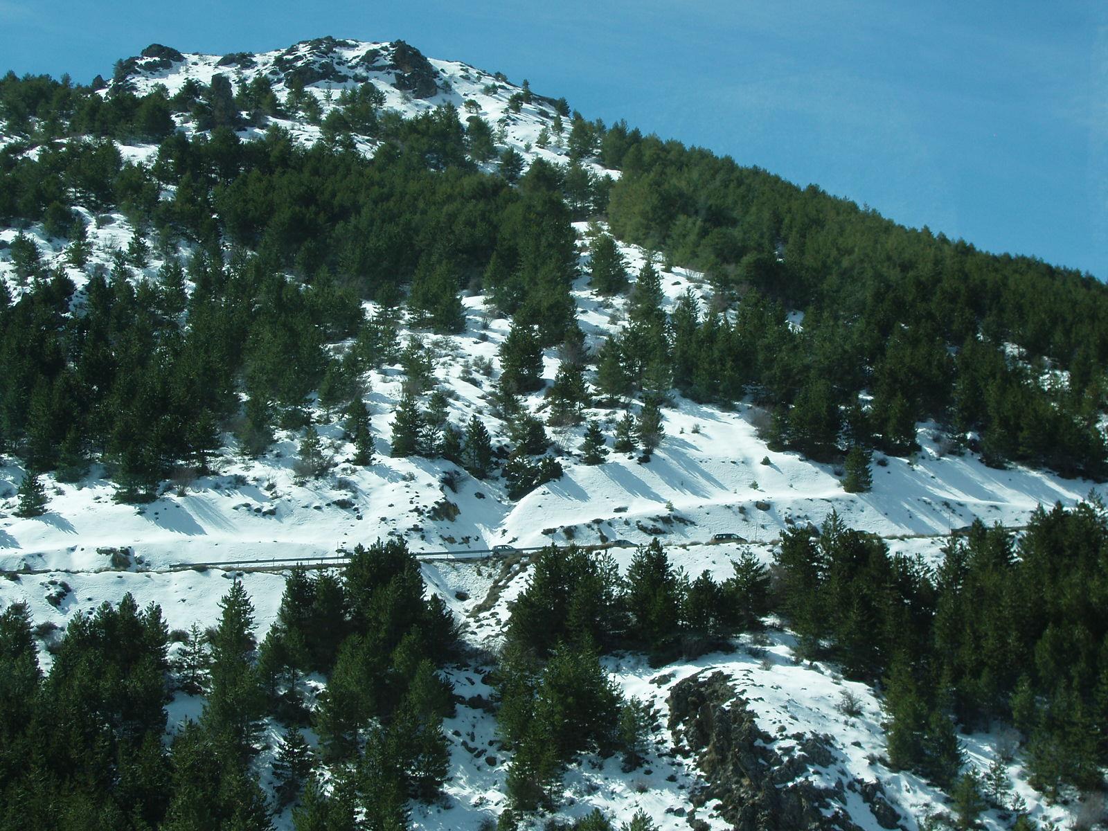 Resultado de imagen de Parque Nacional de Sierra Nevada, Granada