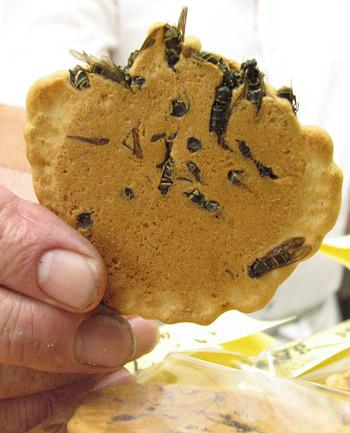 Wasp cookie japan.