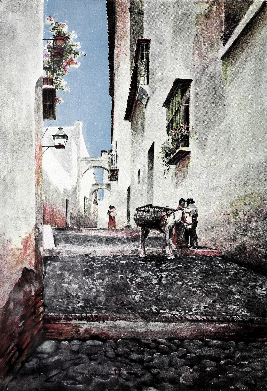 Archivo1900 02 10 Blanco Y Negro Paisajes Andaluces Arcos De La