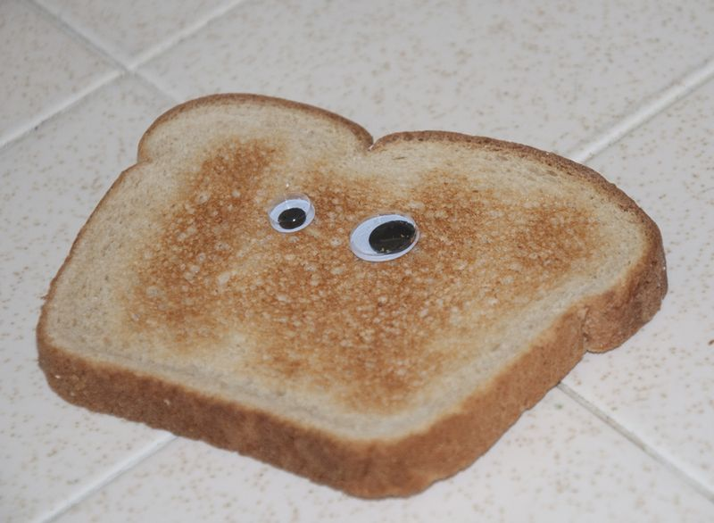 File:A piece of toast with eyes.jpg