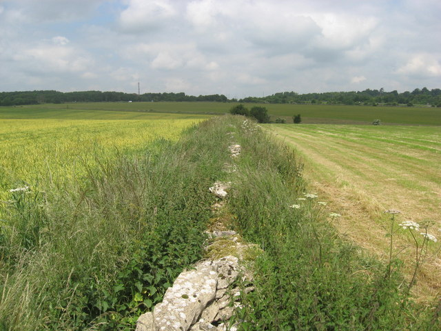 A typical Cotswold stone wall - geograph.org.uk - 1374103