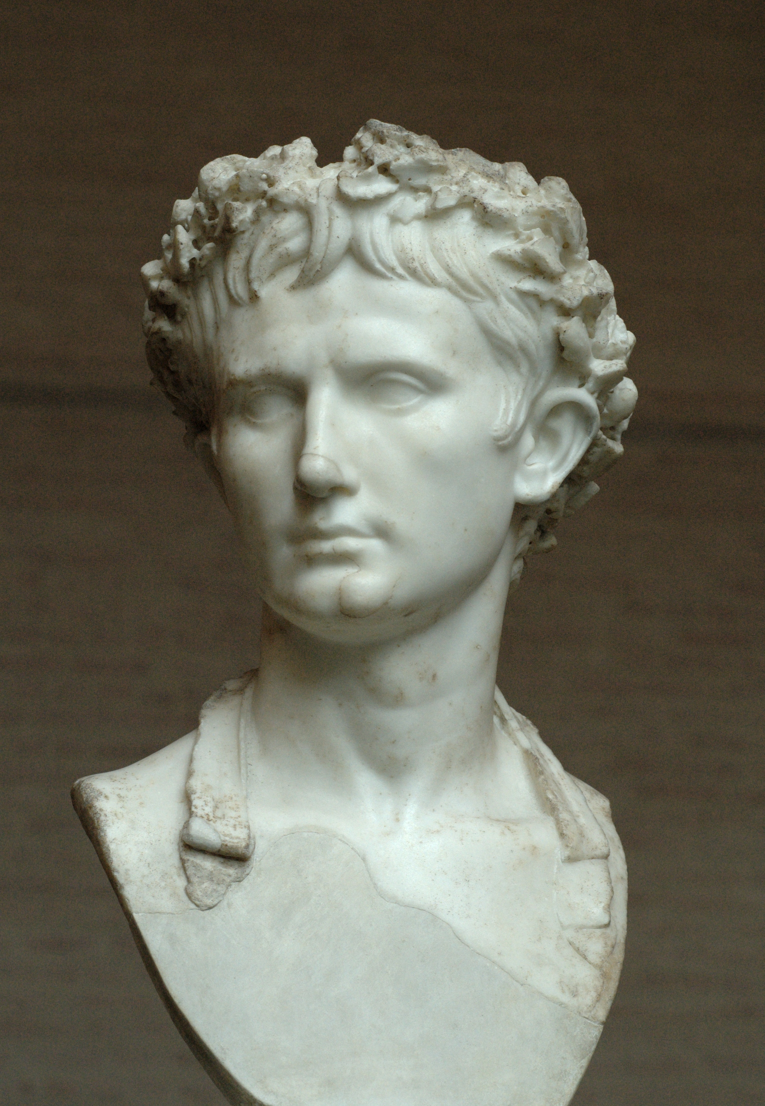 Image of Augustus wearing the Corona Civica