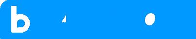 BTV Action 2015 logo.png