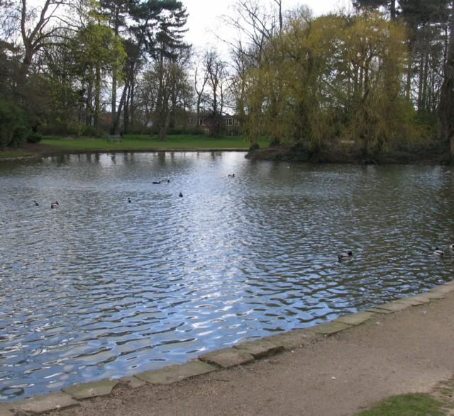 Bedford Park Lake - geograph.org.uk - 760543