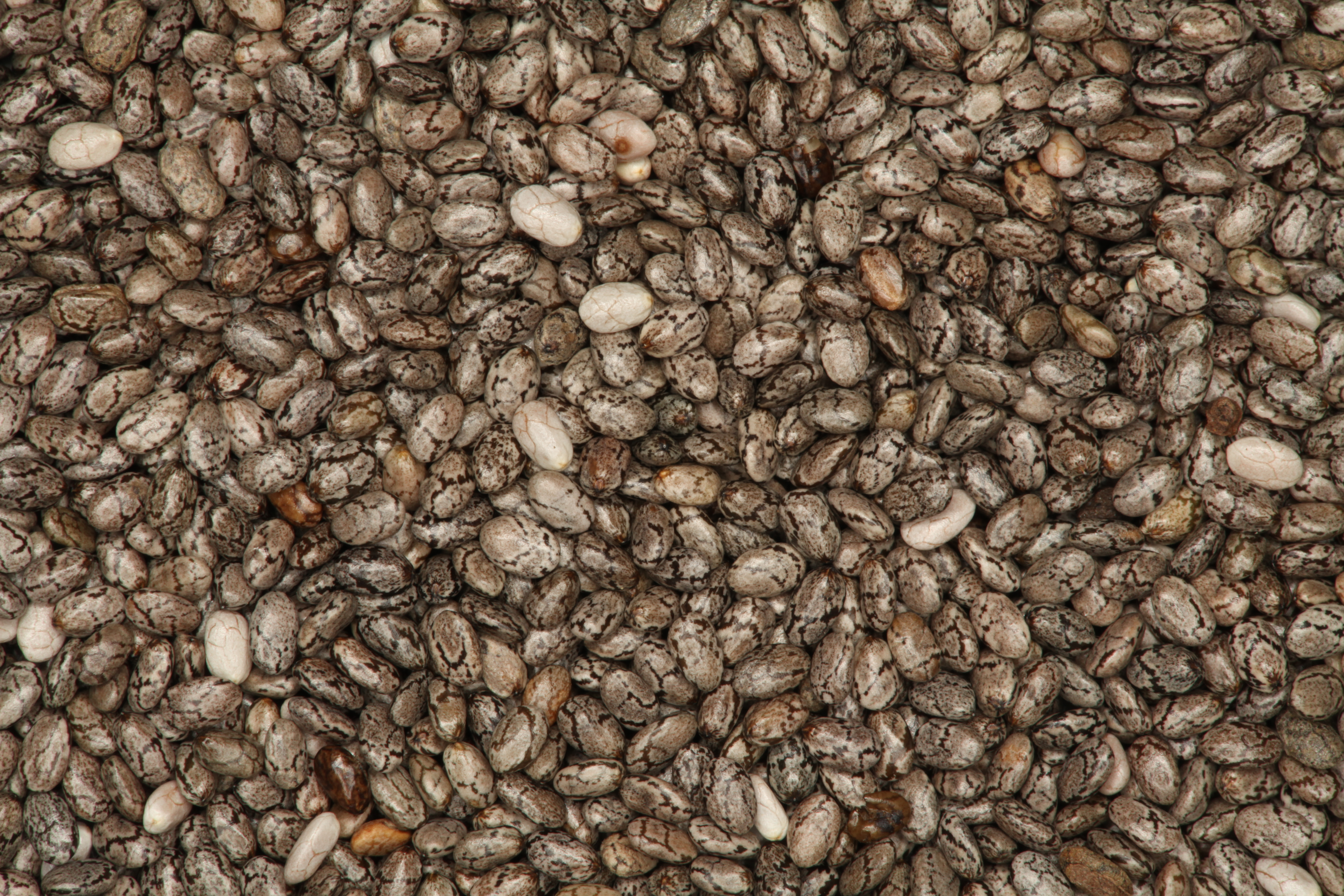 How To Chia Drink Makers Make Seeds Expand Big