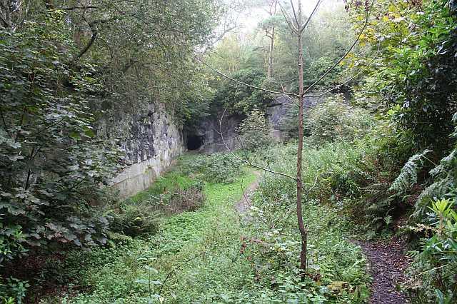 Church Quarry, Alderley Edge - geograph.org.uk - 1600695