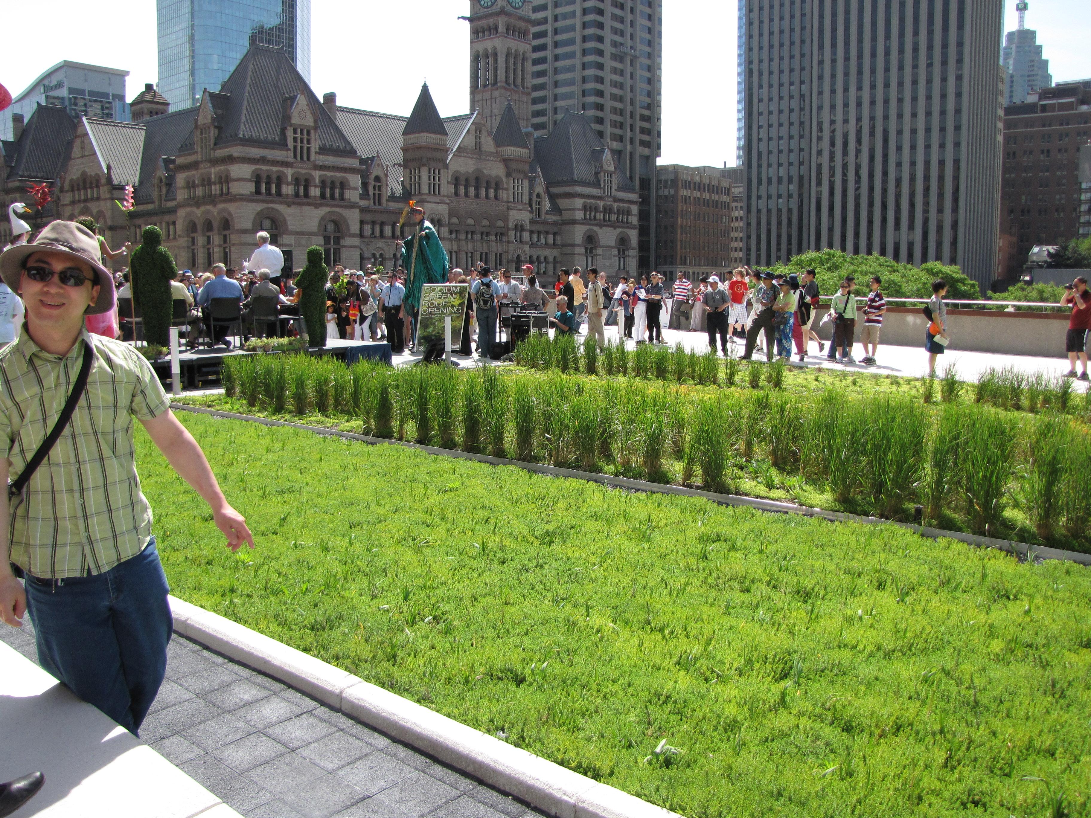 Fra åpningen av det grønne taket på Rådhuset i Toronto, Canada. Foto: Tabercil, CC BY-SA 2.0-lisens