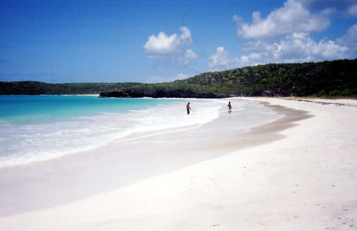 external image Corcho_Beach,_Vieques,_Puerto_Rico.jpg