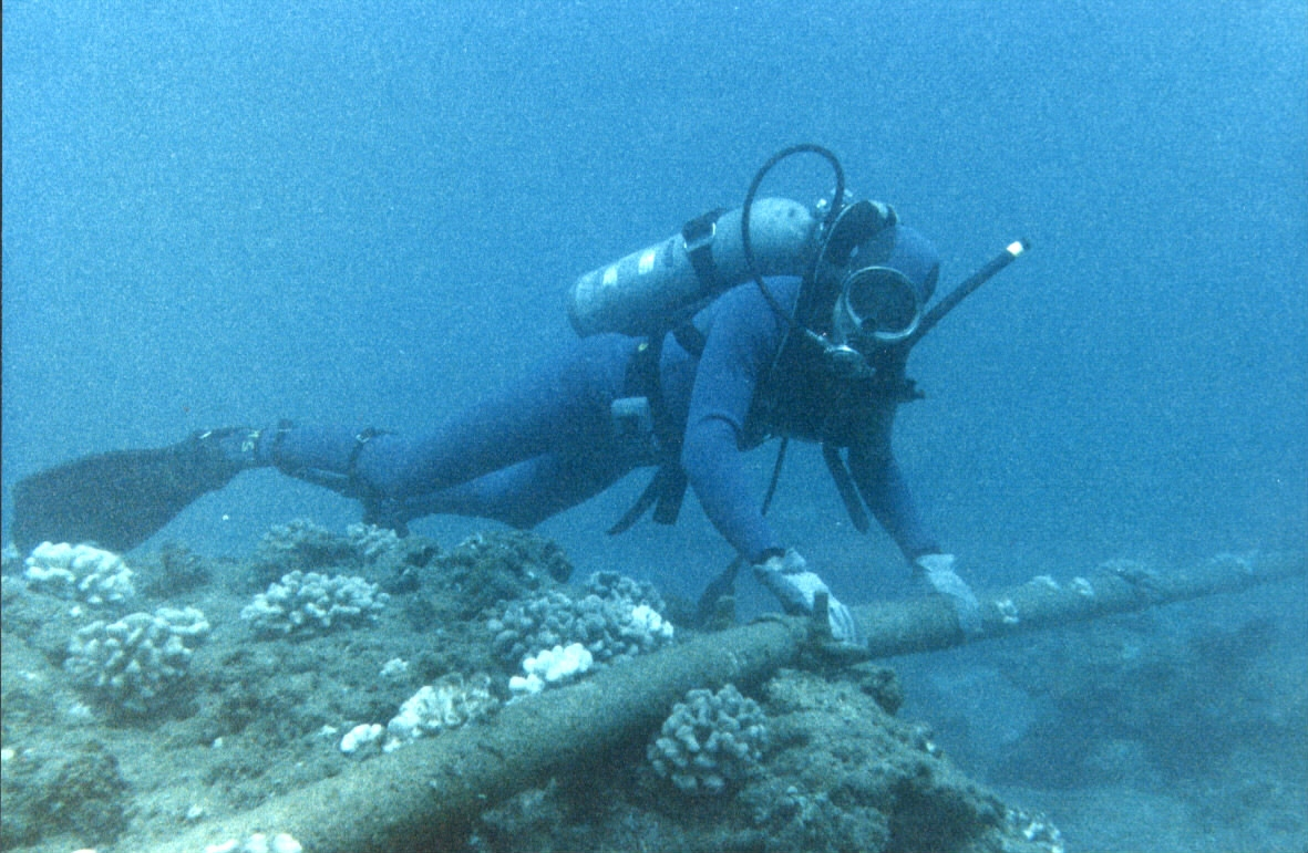 Diver Checking Underwater Protection of Cable - Flickr - The Official CTBTO Photostream.jpg Diver checking underwater protection of cable at