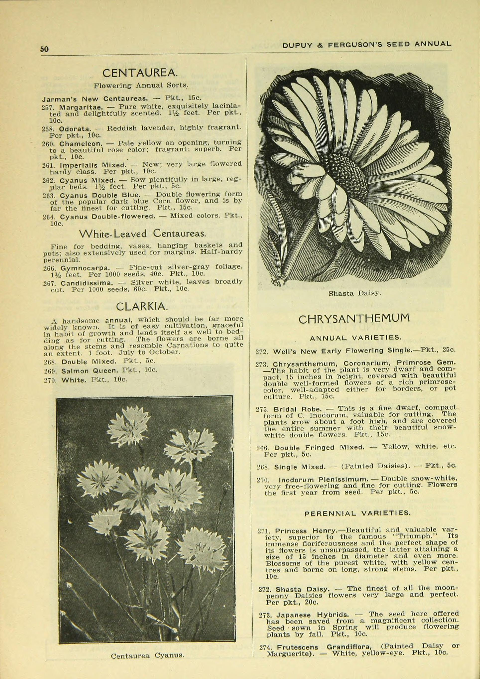 filedupuy and ferguson materials page 50 bhl46962569jpg