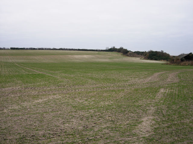 Edge of the Fens - geograph.org.uk - 1161129