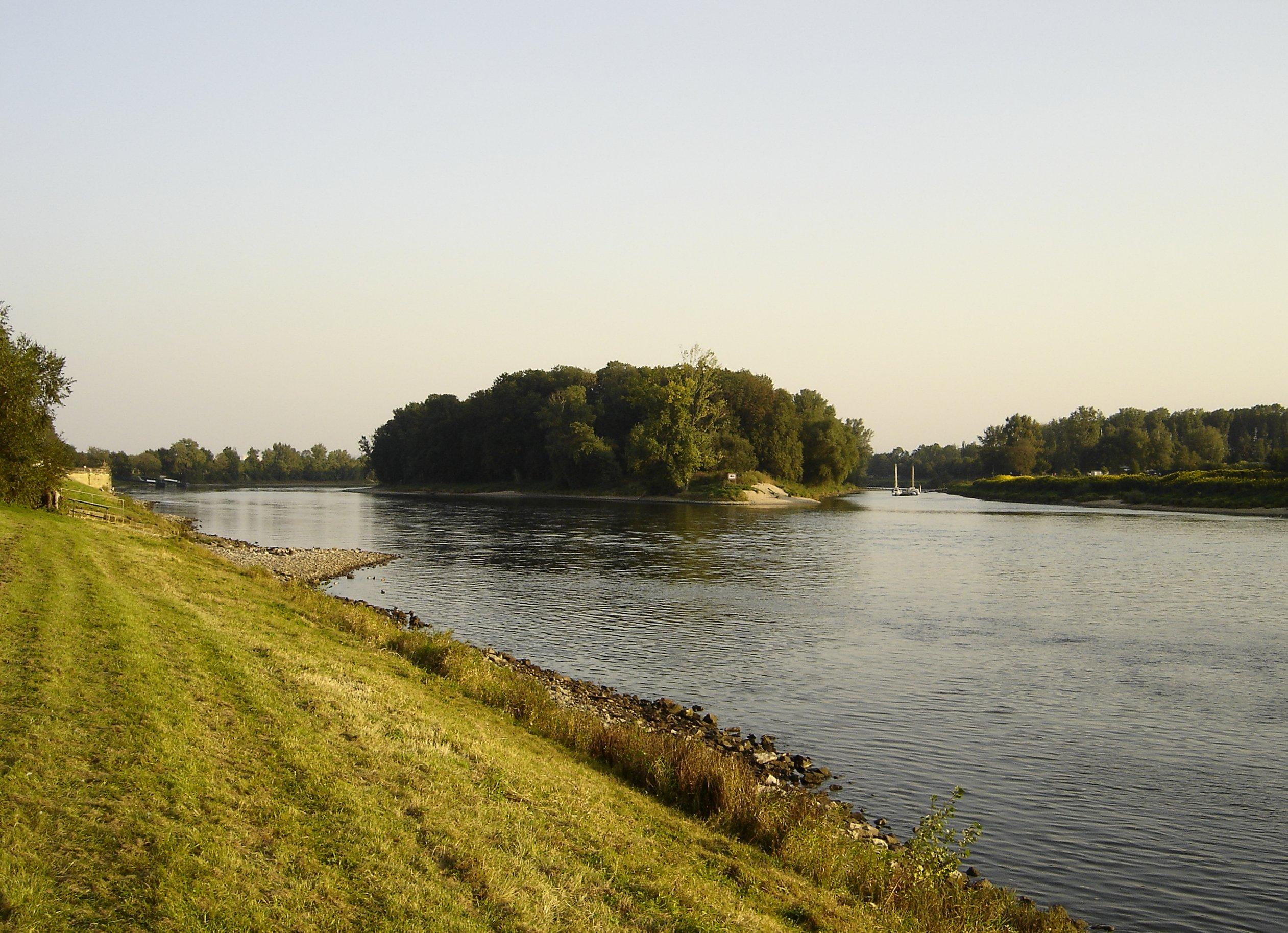 Insel auf der Elbe bei Pillnitz