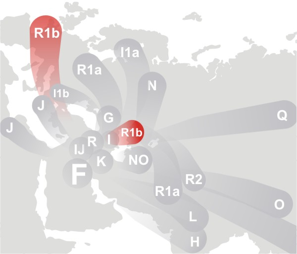 R1b Y Haplogroup Map