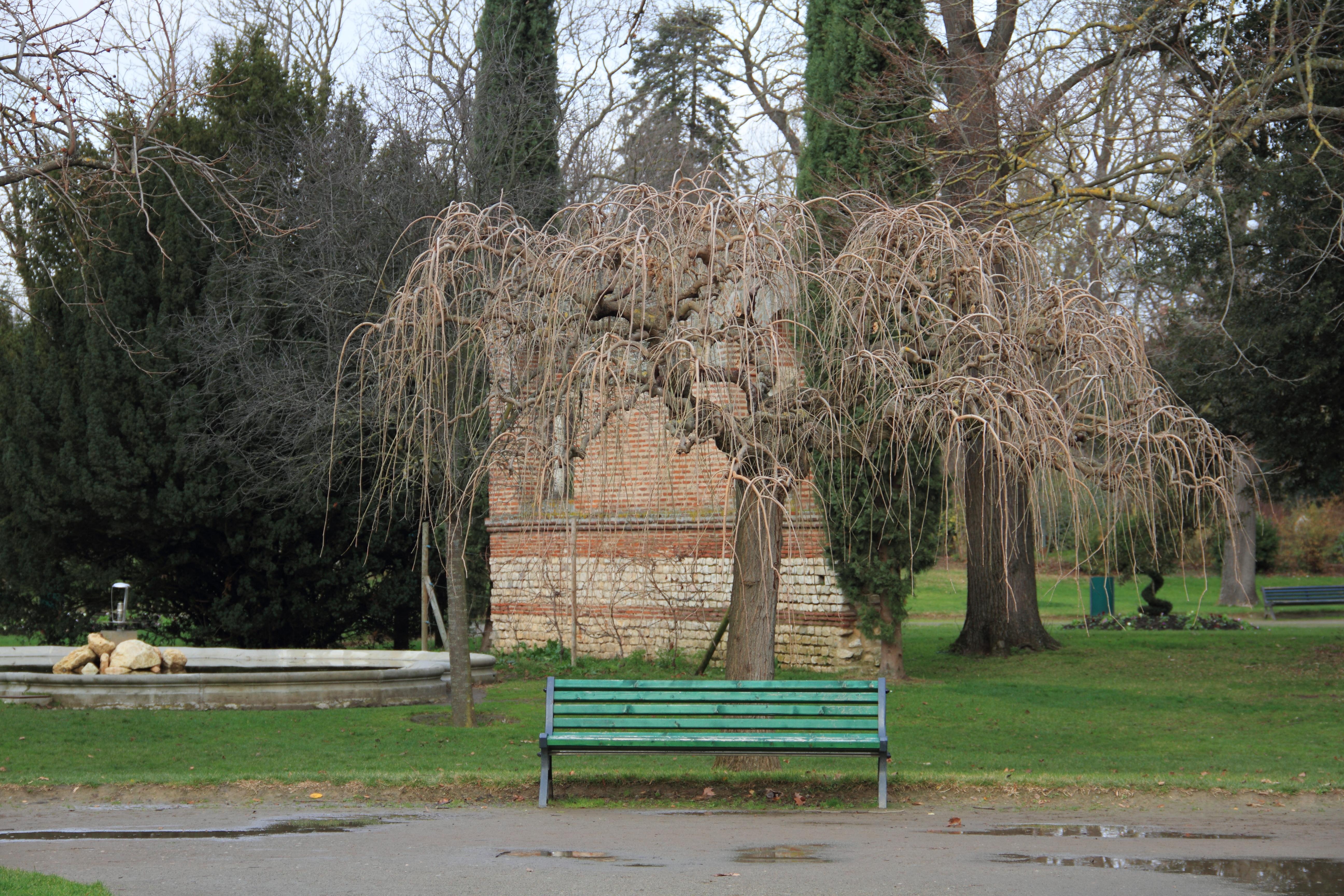 File Jardin des plantes Toulouse 01 JPG Wikimedia mons