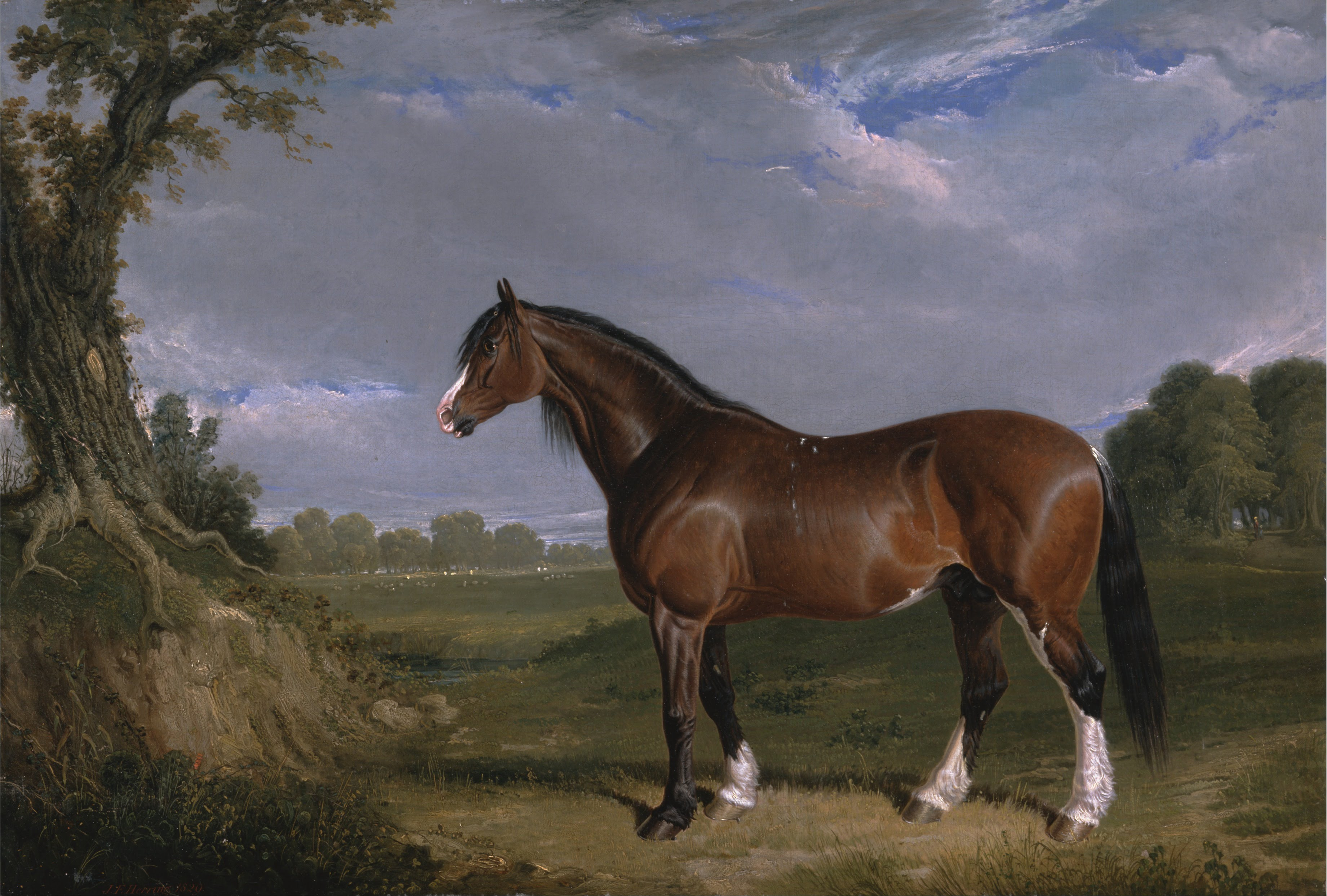 Horse And Painting And Vasquez Famous Spanish Painter