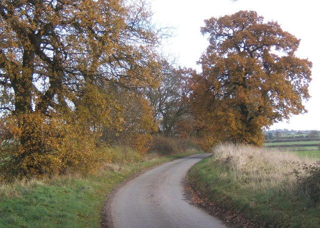File:Lane near junction, between Gazeley and Higham - geograph.org.uk - 623095.jpg