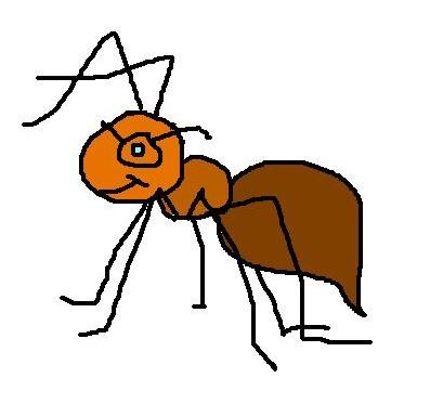 Mr ant