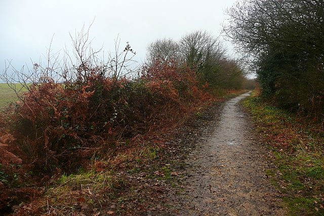 National cycle route at Chilling - geograph.org.uk - 1145176