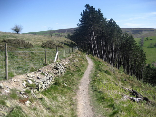 Offa's Dyke Path above Llangwyfan Woods - geograph.org.uk - 1329545