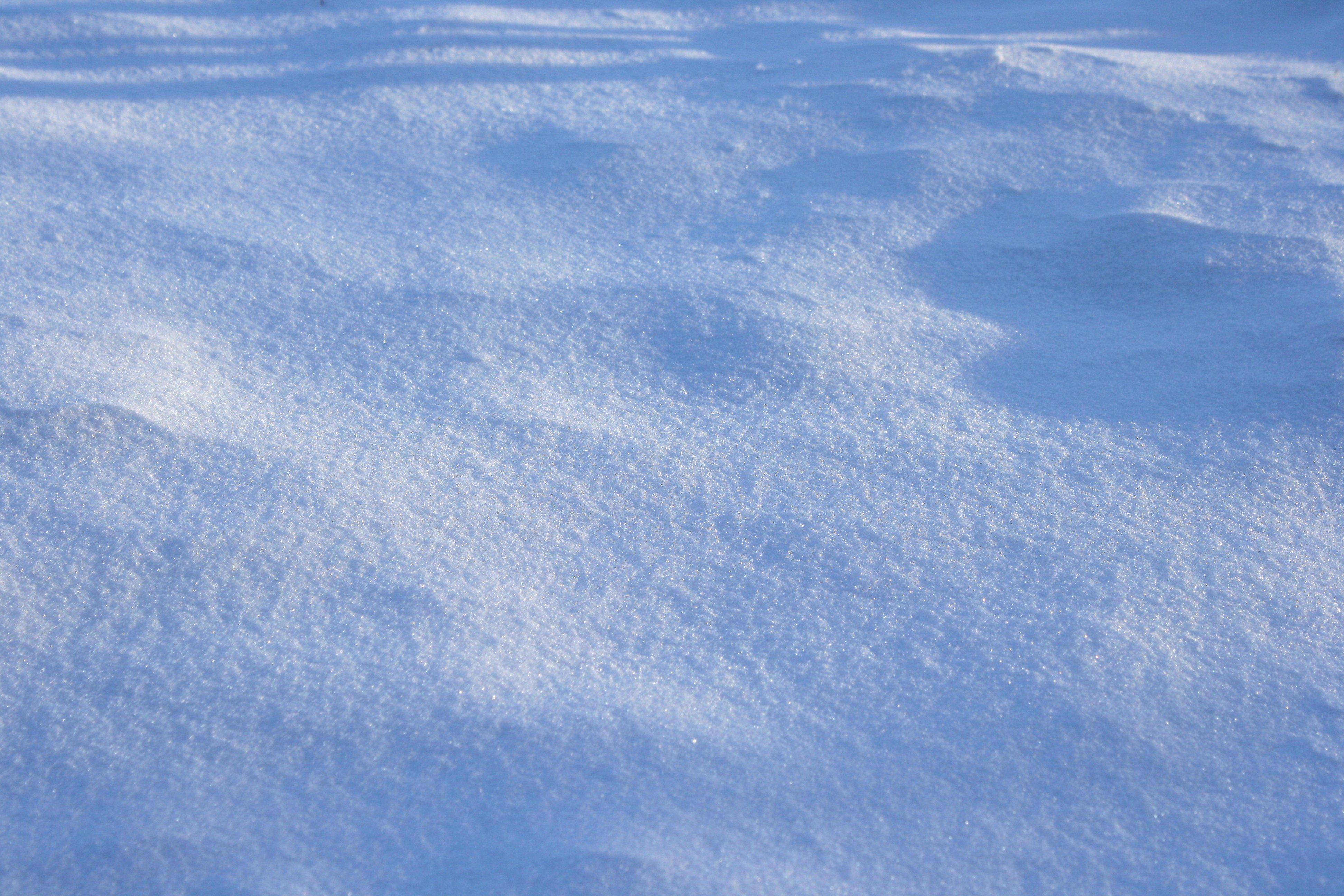 Description Shadows on snow.jpg
