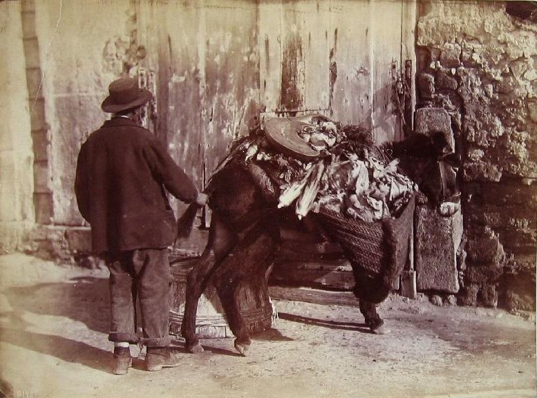File:Sommer, Giorgio (1834-1914) - n. 6143 - Napoli - (Kostümszene Gemüsehändler mit Esel (Asinaio).jpg
