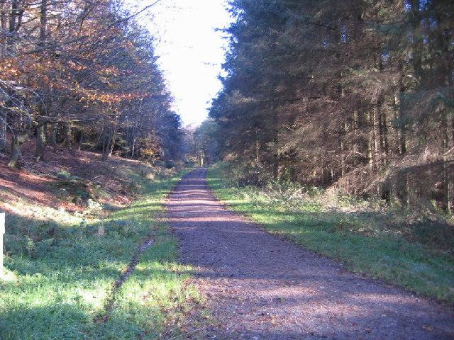 File:The Setmurthy Common Track - geograph.org.uk - 79945.jpg