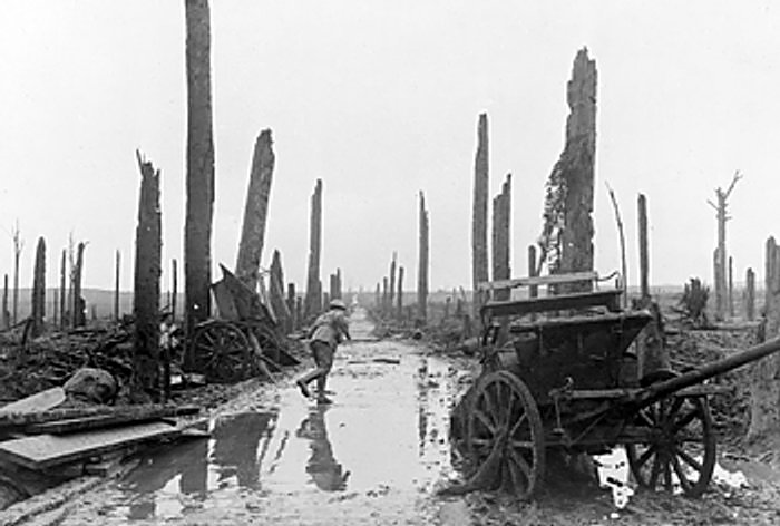 A soldier running along a corduroy track with gaunt tree trunks on either side in Chateau Wood