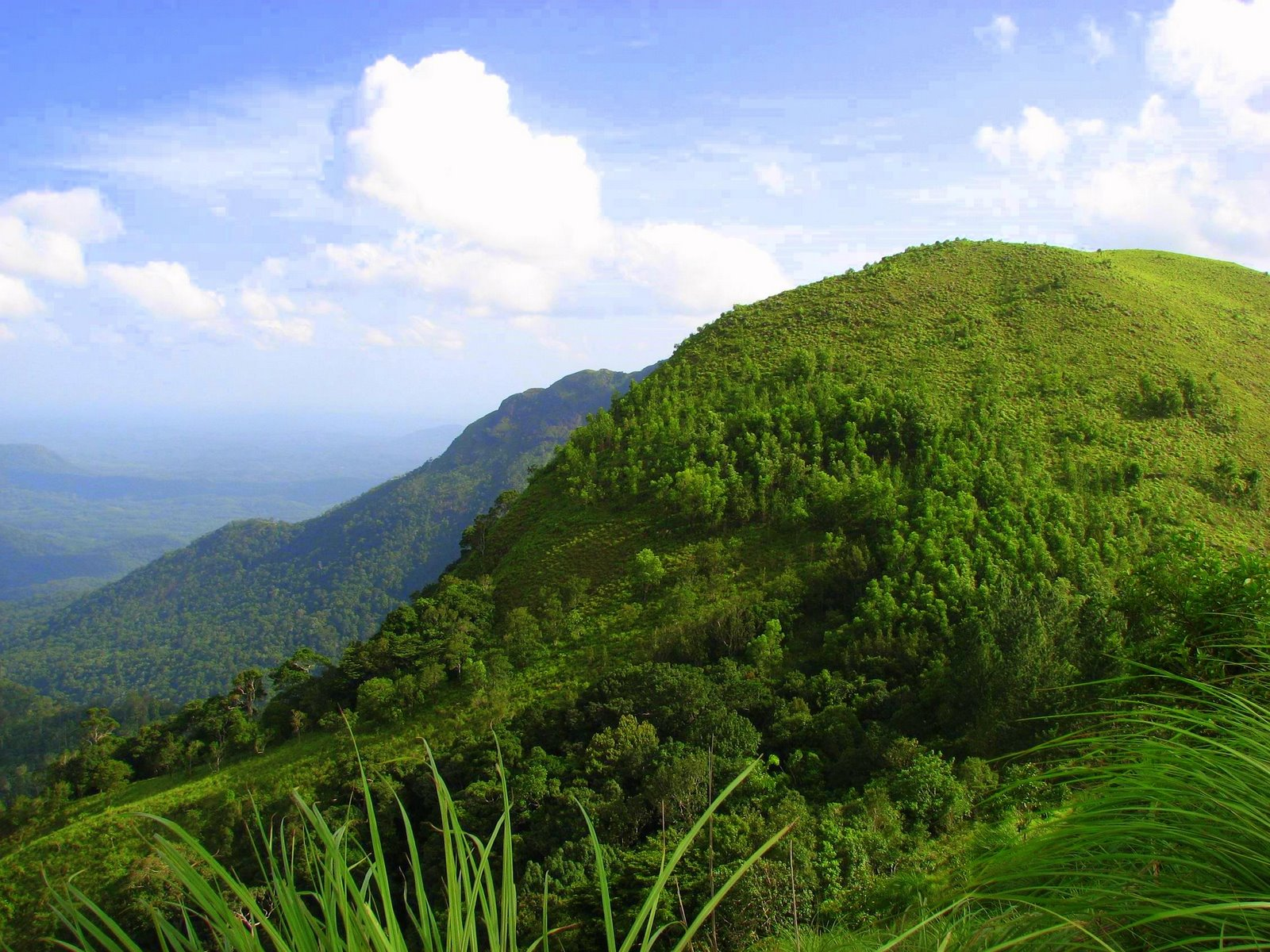 A view of Ponmudi Hills in Thiruvananthapuram district, Kerala.