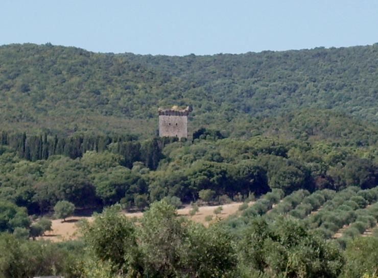 Torre Bassa, Parco della Maremma