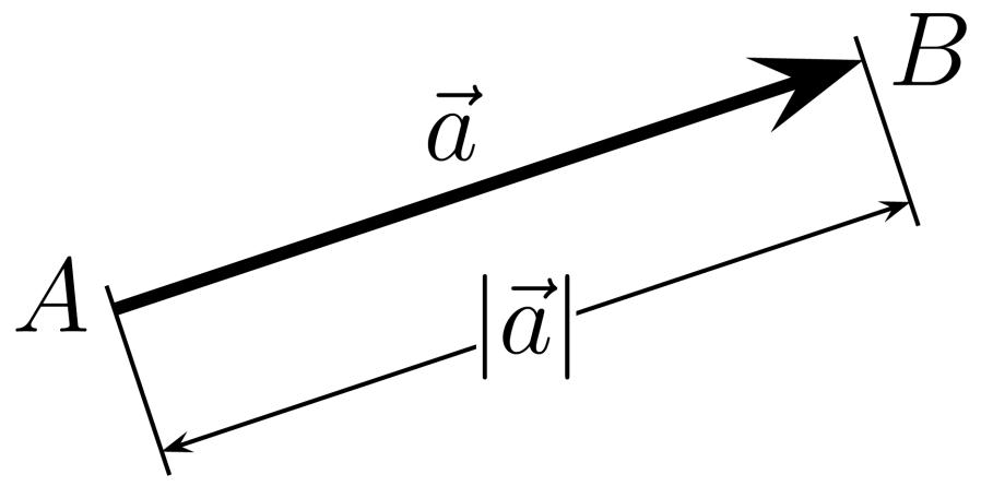 Vektor – Wikipedia