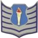 AFJROTC TSGT insignia.png