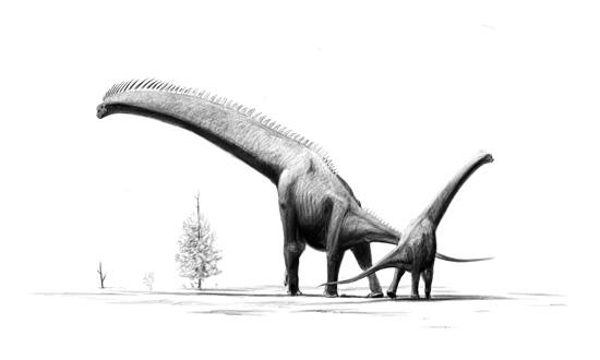 Fil:Brachiosaurus-brancai jconway.jpg