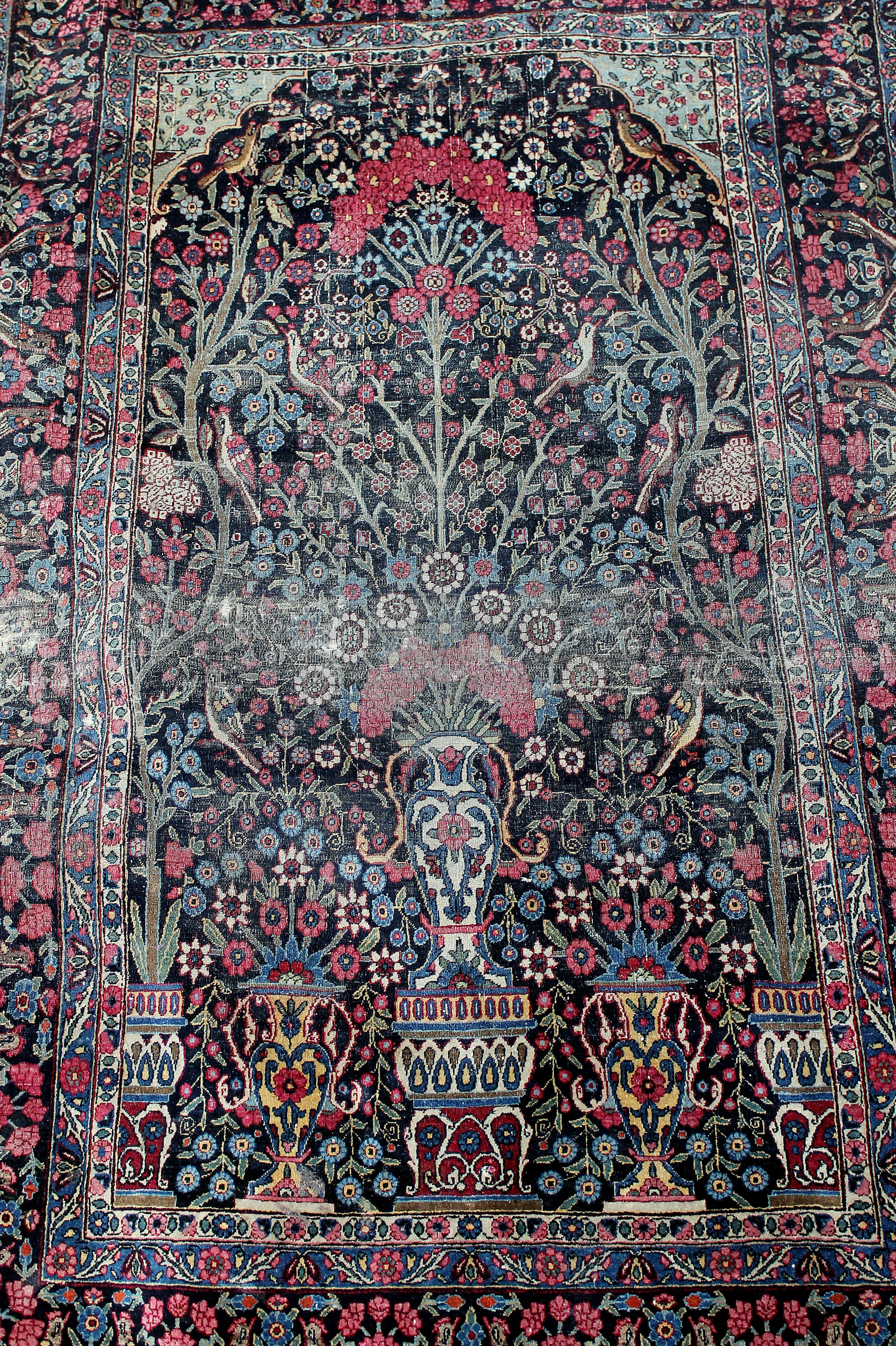 File Carpet Tree Of Life Jpg Wikimedia Commons