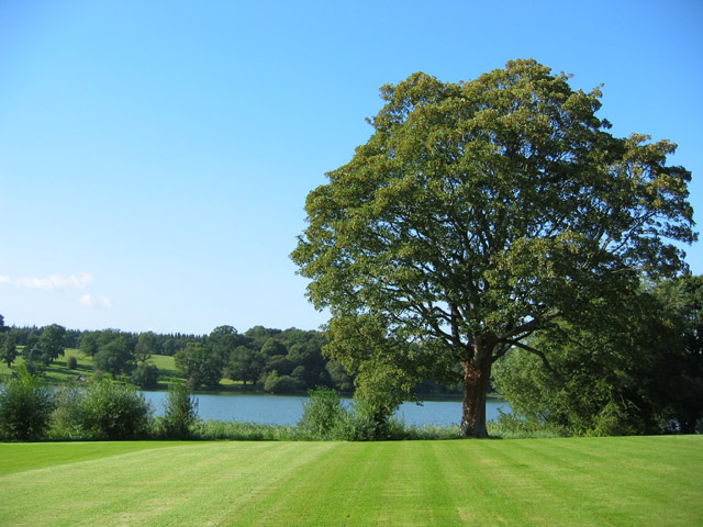 Comber Mere, by Combermere Abbey - geograph.org.uk - 234838