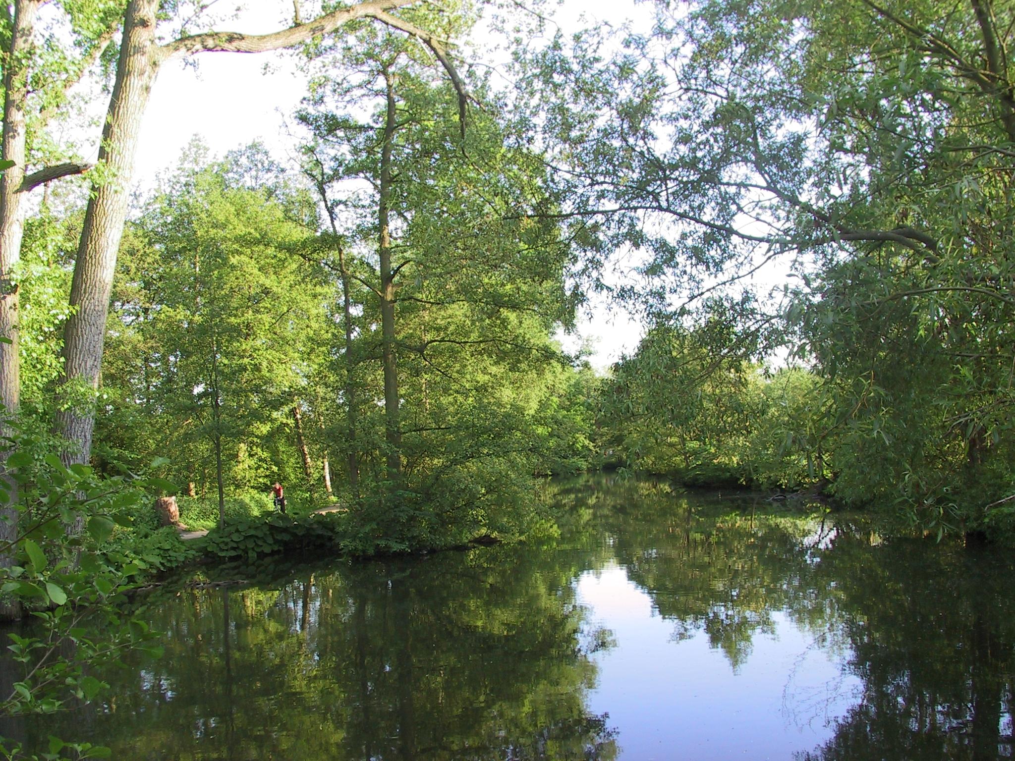 File denmark odense river scenery