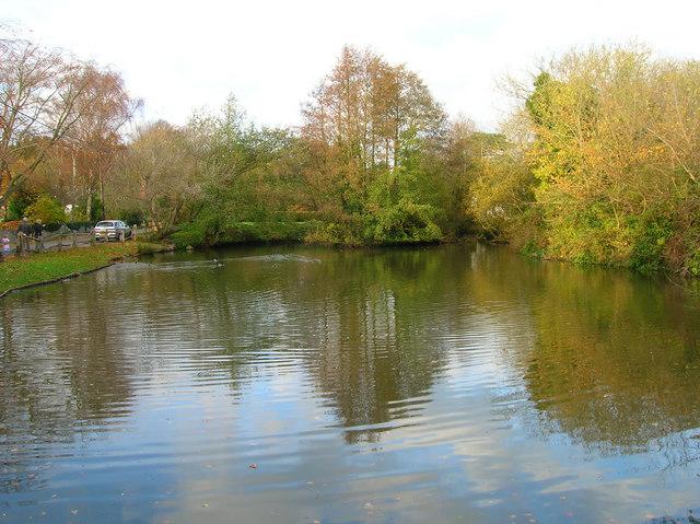 Ditchling Village Pond - geograph.org.uk - 608887