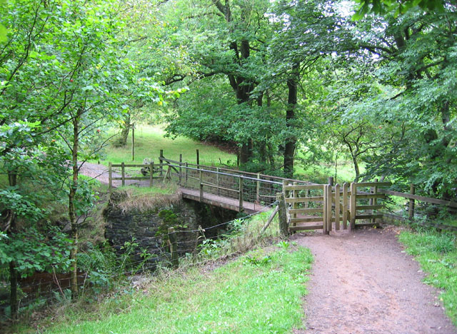 Footbridge over Black Brook - geograph.org.uk - 317640