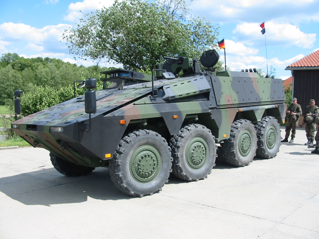 GTK Boxer: 8x8 APC, 200 in active service, counting Command (36), Ambulance (52), Engineering (80), Repair (12), Cargo (18) and Driver training (8) variants.