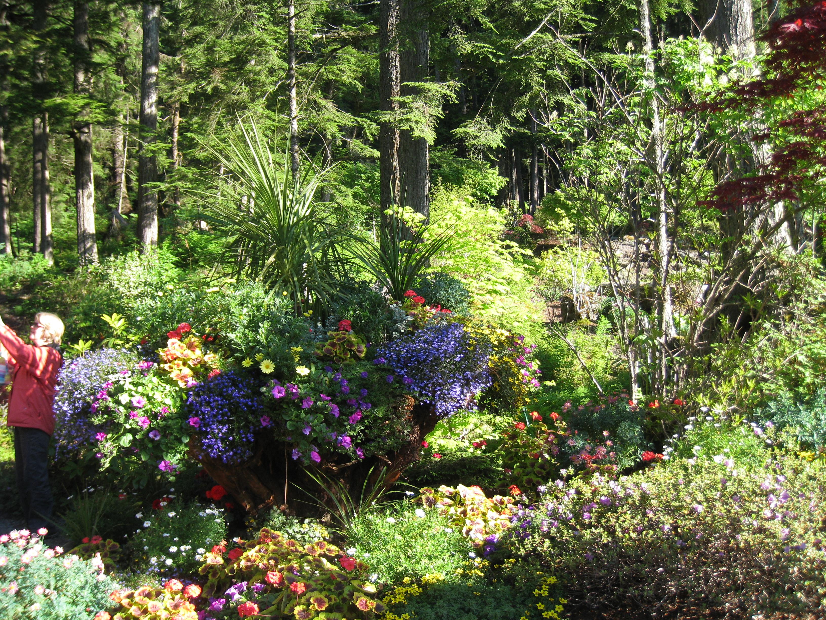 Tree Garden Way Virginia Beach Va