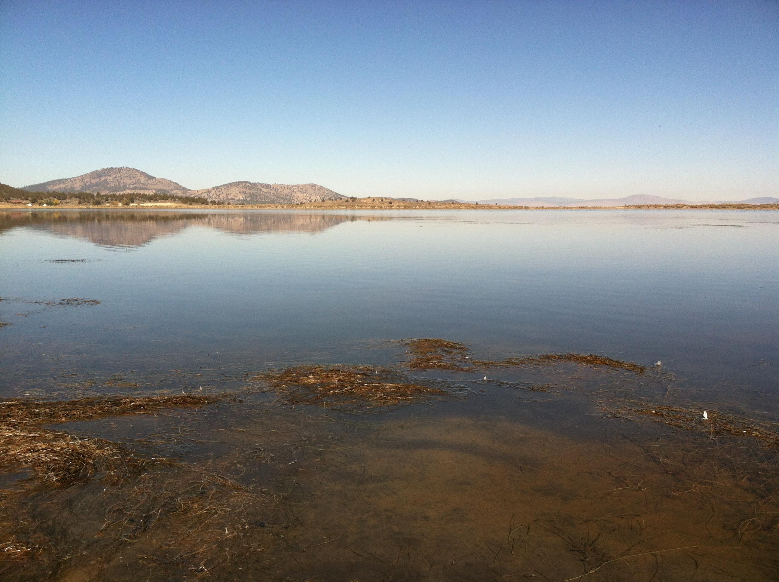 land for sale Siskiyou county CA