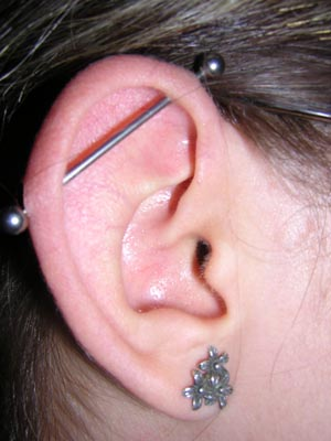 English: Pierced ear: Lobe (bottom) / Industri...