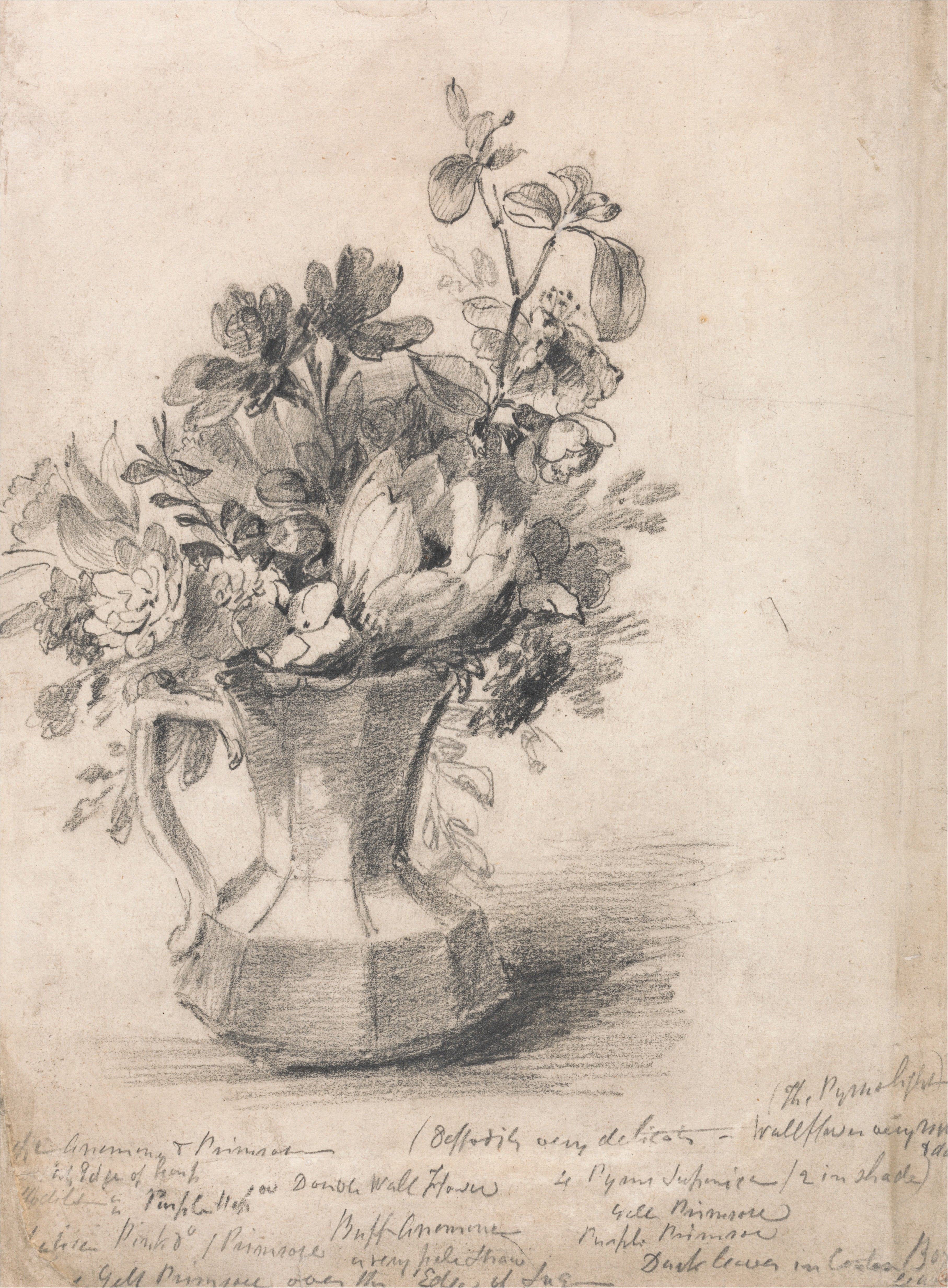 How To Draw A Flower Vase Still Life