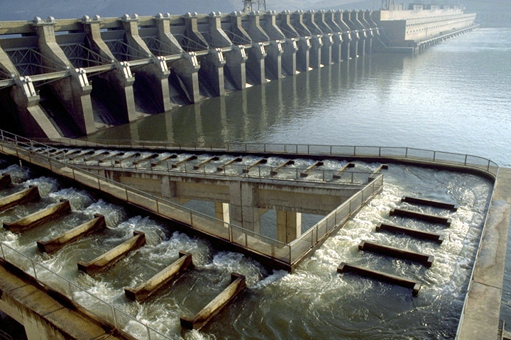 File john day dam fish wikimedia commons for Dam fish count